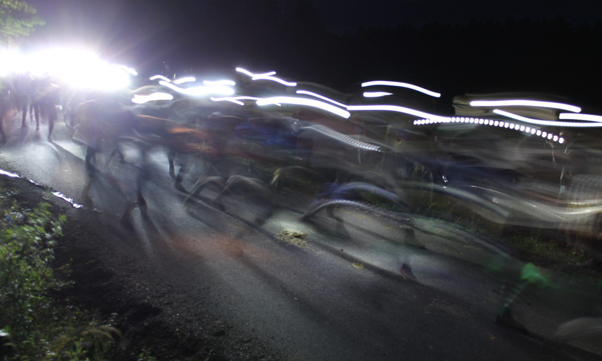NM i nattorientering 2018